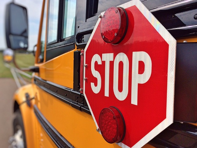 School Bus = Safe Zone!