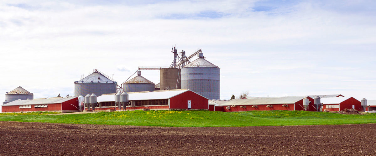 AgriBusiness picture of a farm